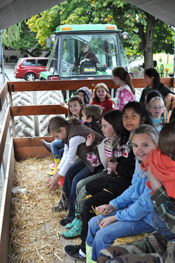 Educational school tours and field trips all include a tractor pulled hayride at Bob's Corn Maze and Pumpkin Patch in Snohomish, Washington, N.E. of Seattle.